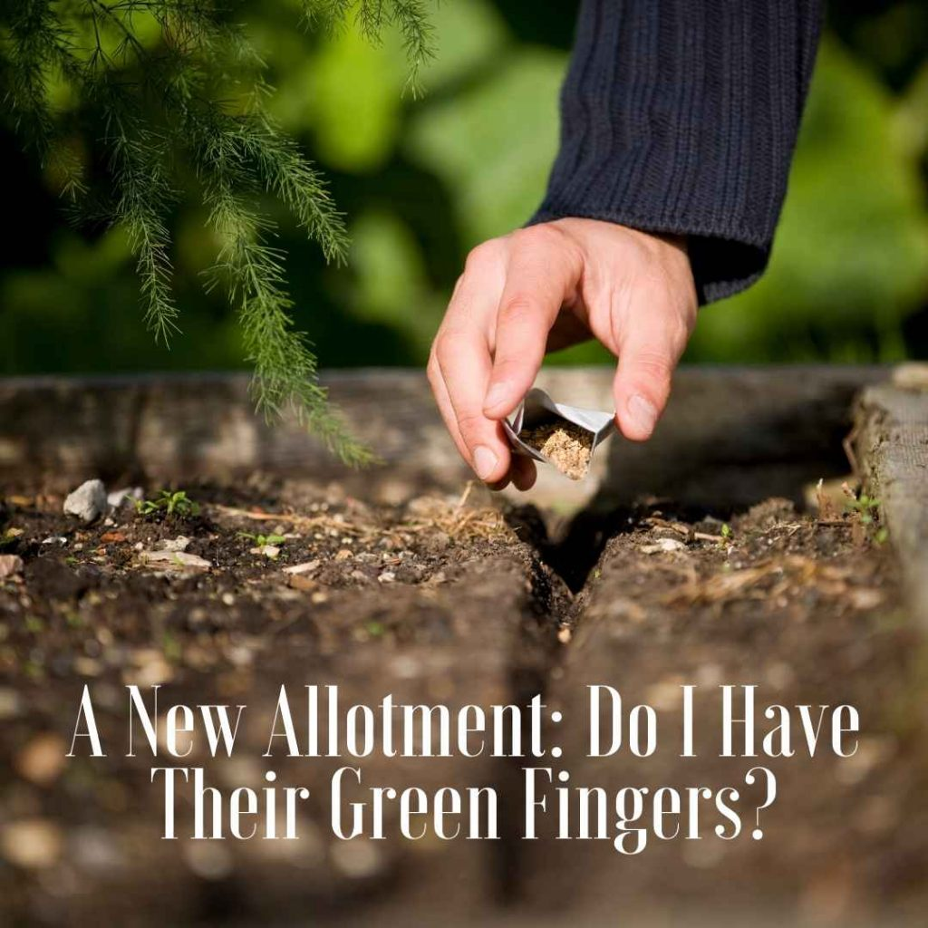 a new allotment test over earth and seeds