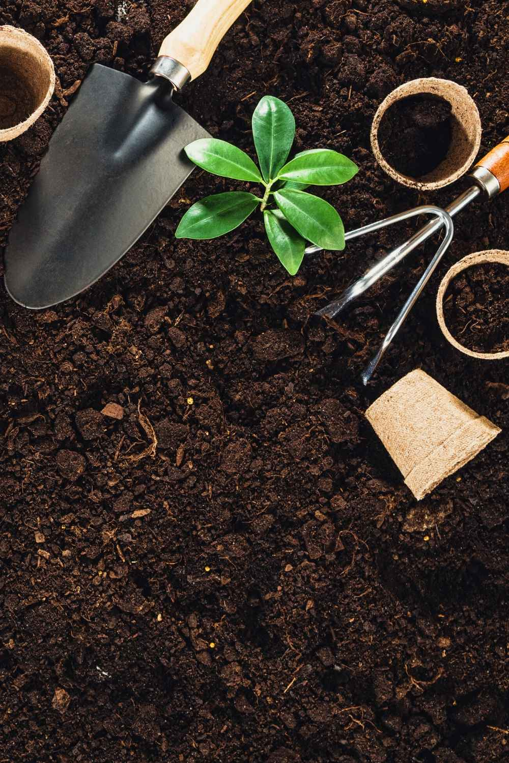 allotment tools and earth