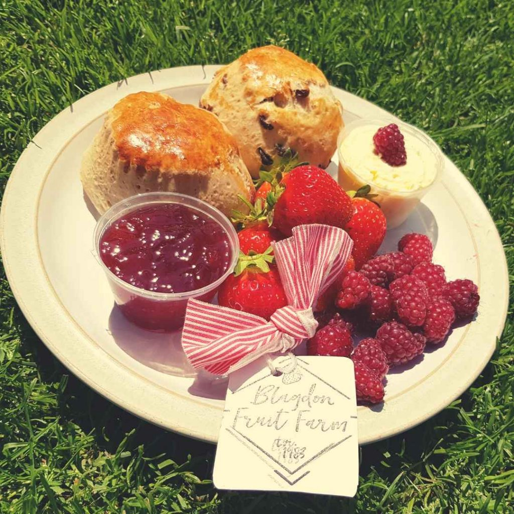blagdon fruit farm cream tea