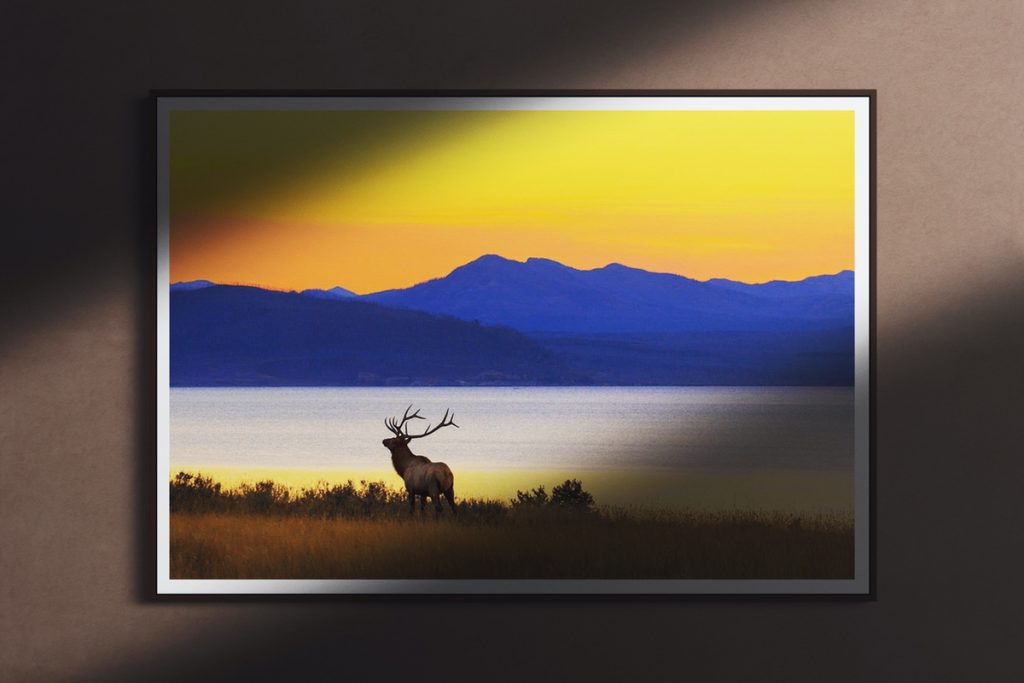 fine art america sunset picture