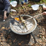 Forest School Camp Fire