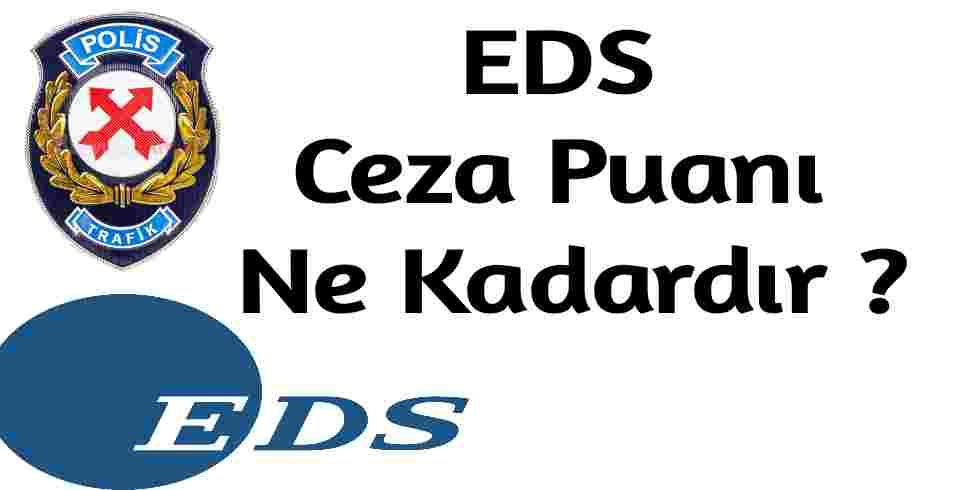EDS Ceza Puanı