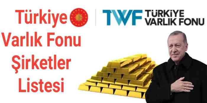 Türkiye Varlık Fonu Şirketleri