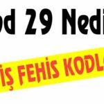 39/3 Geçerlilik Süresi Dolan Ehliyet Cezası