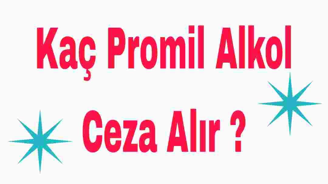 Kaç Promil Alkol Ceza Alır ?