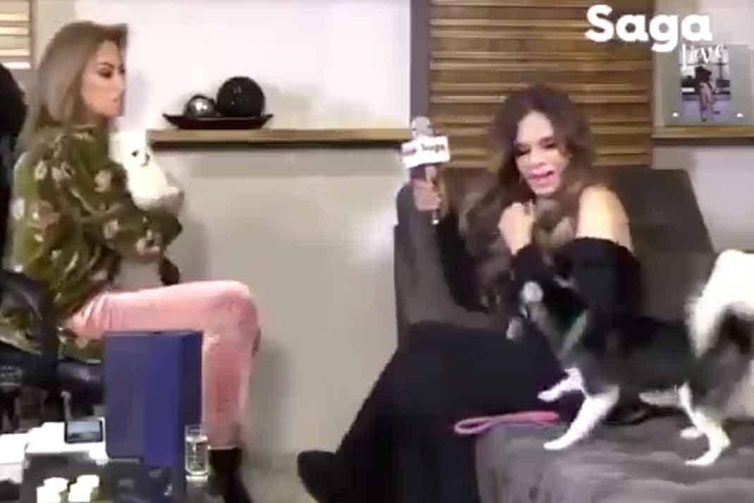Pobre Lucía, vivió un susto durante la entrevista que le hizo Adela