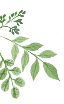 leaf-bg-1