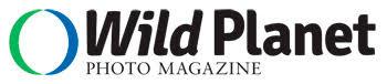 wildplanet magazine