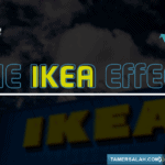 The IKEA Effect – تأثير ايكيا و استخدامه في التسويق