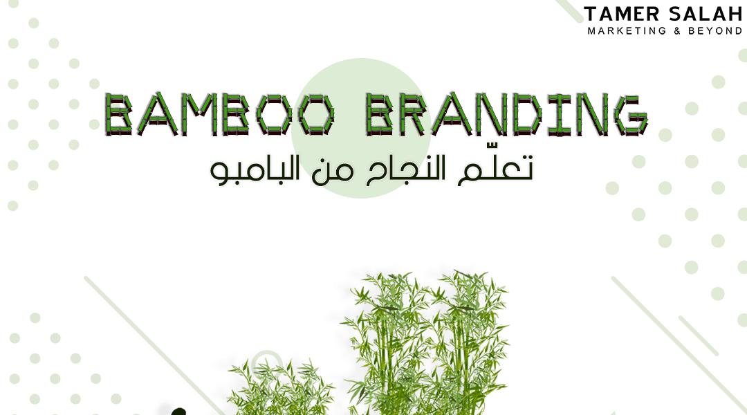 Bamboo Branding Success – تعلّم النجاح من البامبو