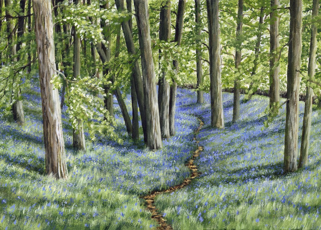 'Sun amidst the Bluebells' (Card)