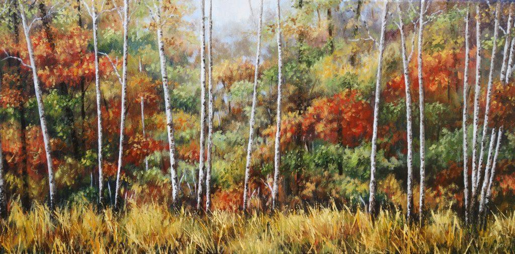 silver-birches-in-autumn