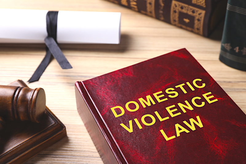 A lawbook that's entitled Domestic Violence Law.