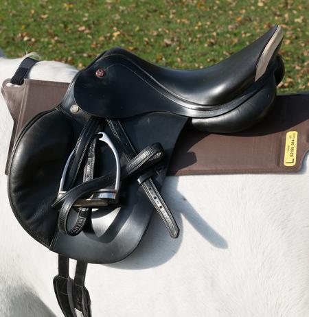 pliance® – s: Pressure between saddle and horse - novel sensors