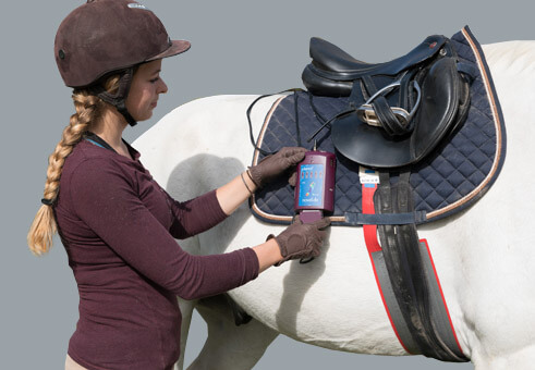 pliance : Pressure between saddle and horse | novel.de