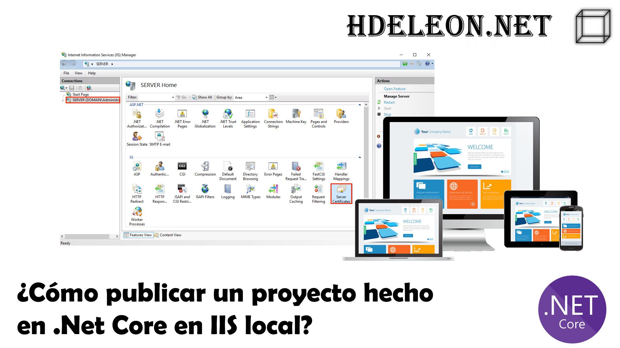 ¿Cómo publicar un sitio hecho en .Net Core en IIS local?