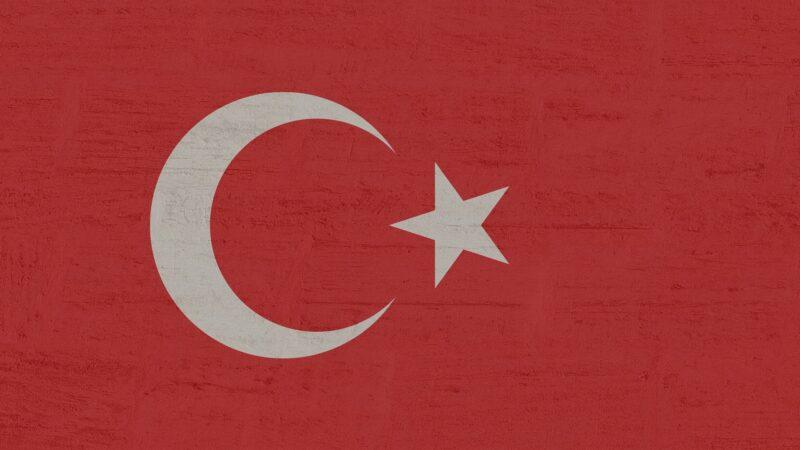 Opencart Türkçe Dil Ekleme