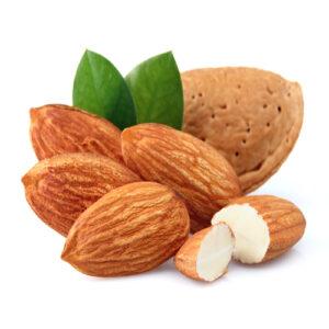 Almond (Sweet) Carrier Oil