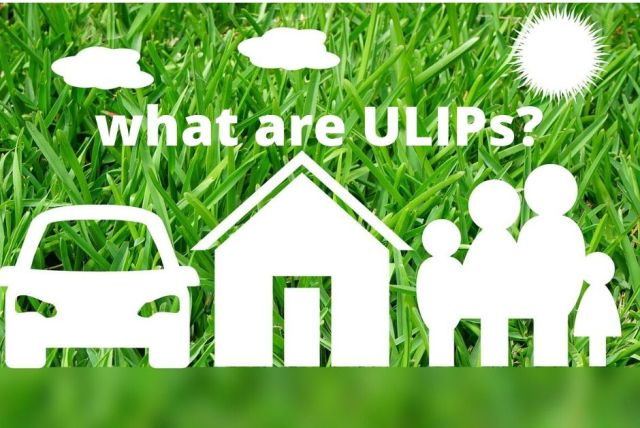 what are ulips