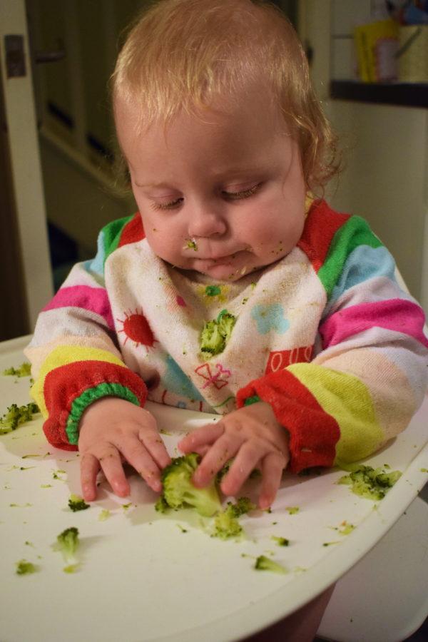 baby in highchair wearing bib, holding broccoli