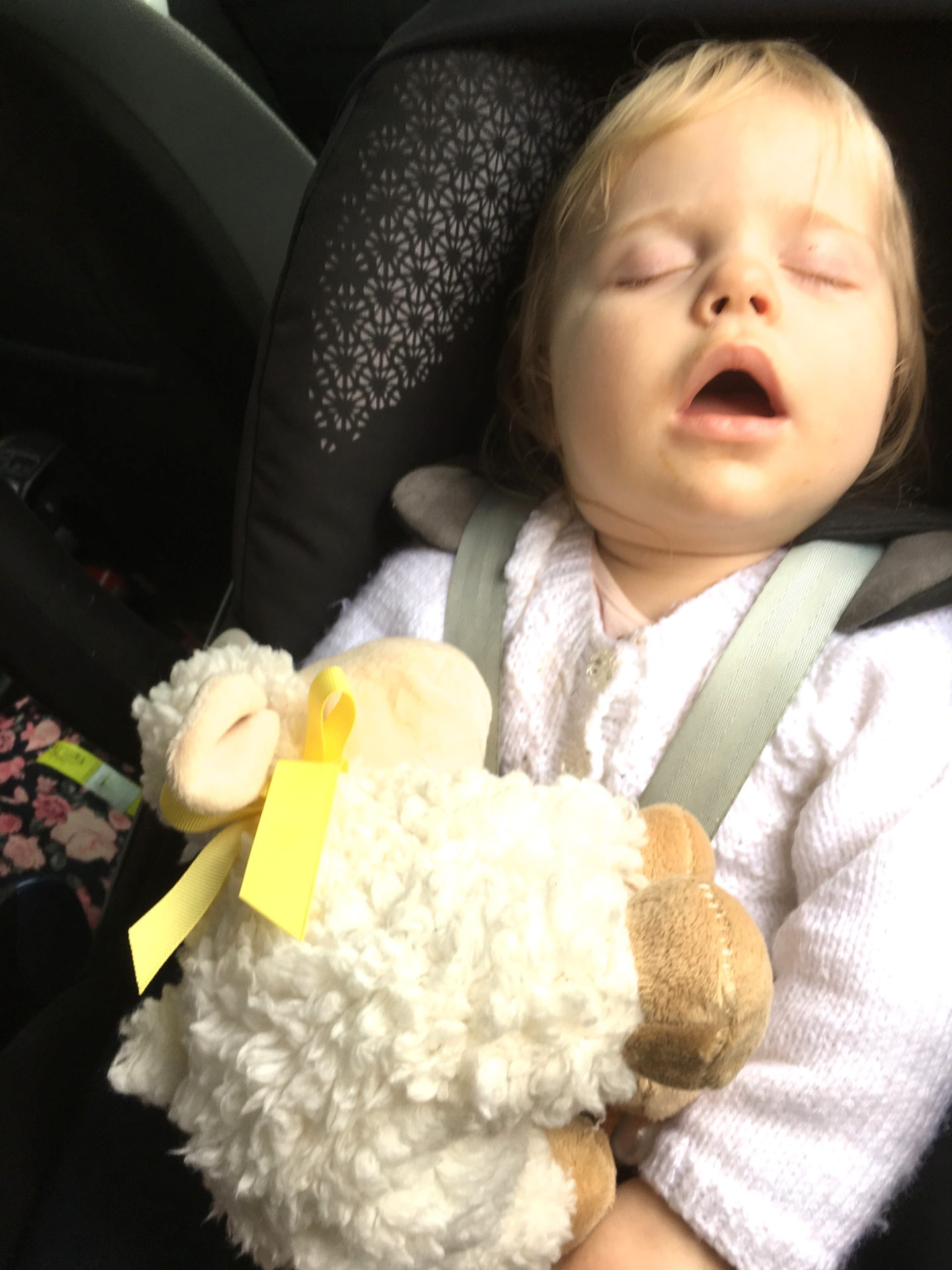 14 month old girl asleep in car seat holding toy lamb