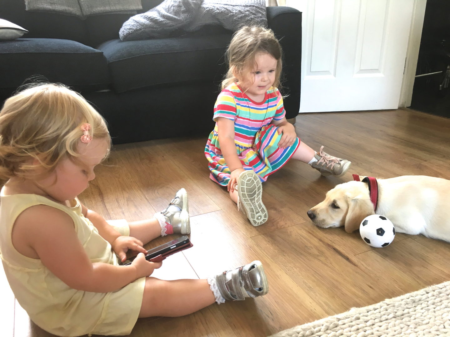 two sisters and a yellow labrador puppy sitting together on the floor