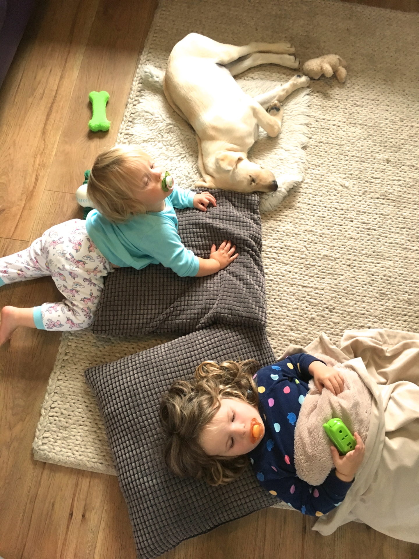 two sisters and a dog lying on the floor on custions, taken from above