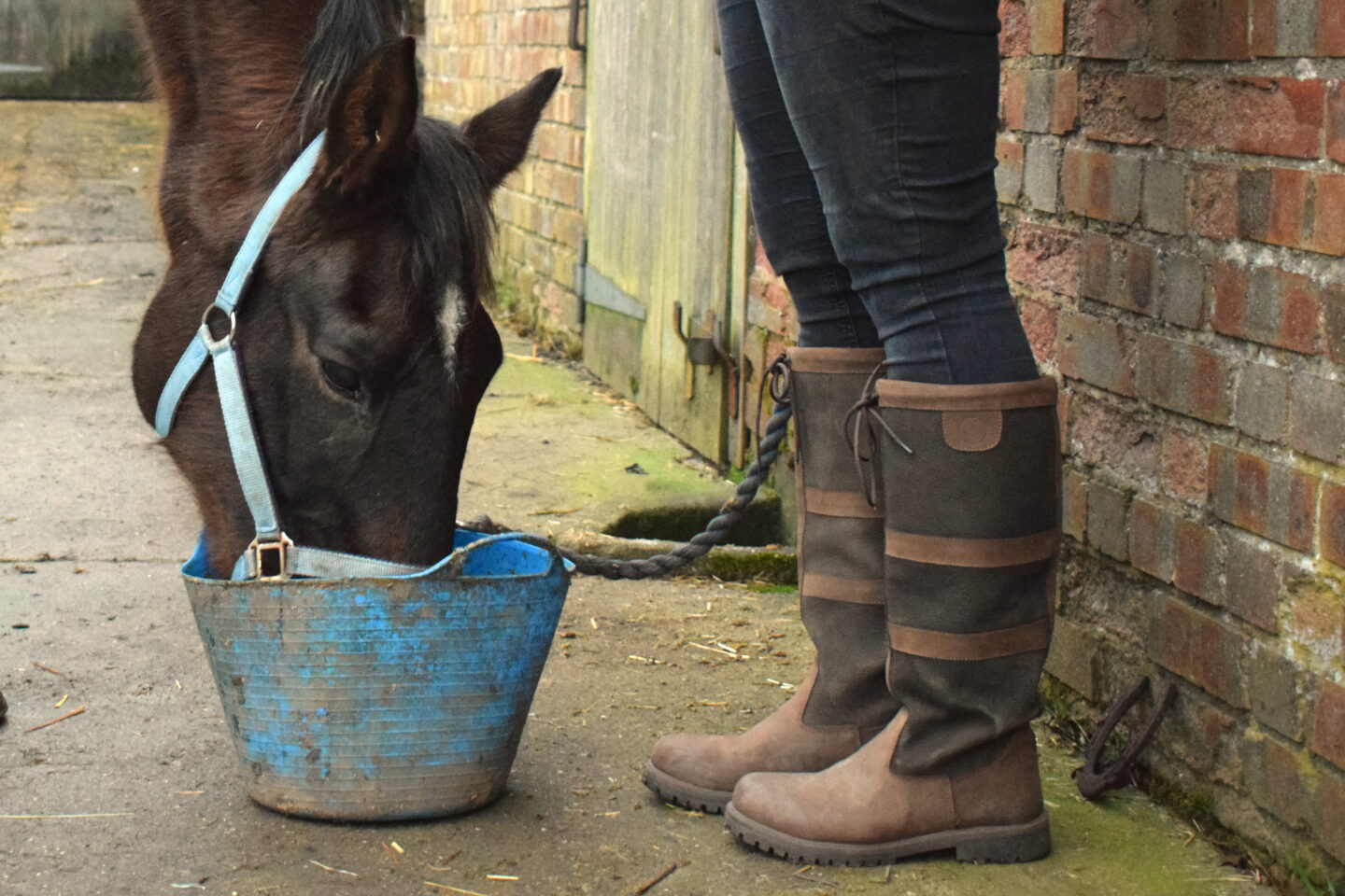 woman's Rydale boots standing next to a horse eating from a bucket