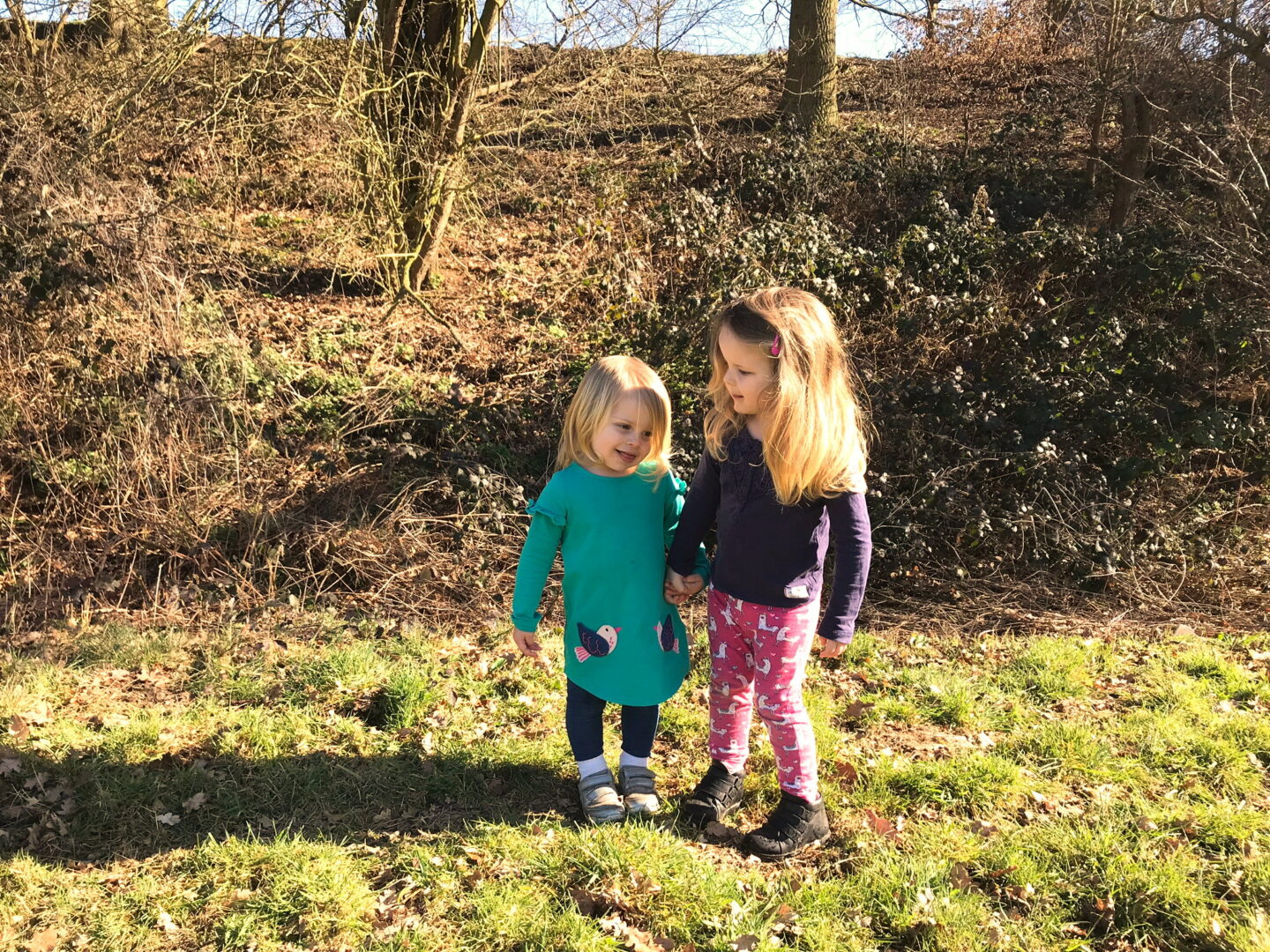 Two young sisters standing in a field holding hands in sunshine