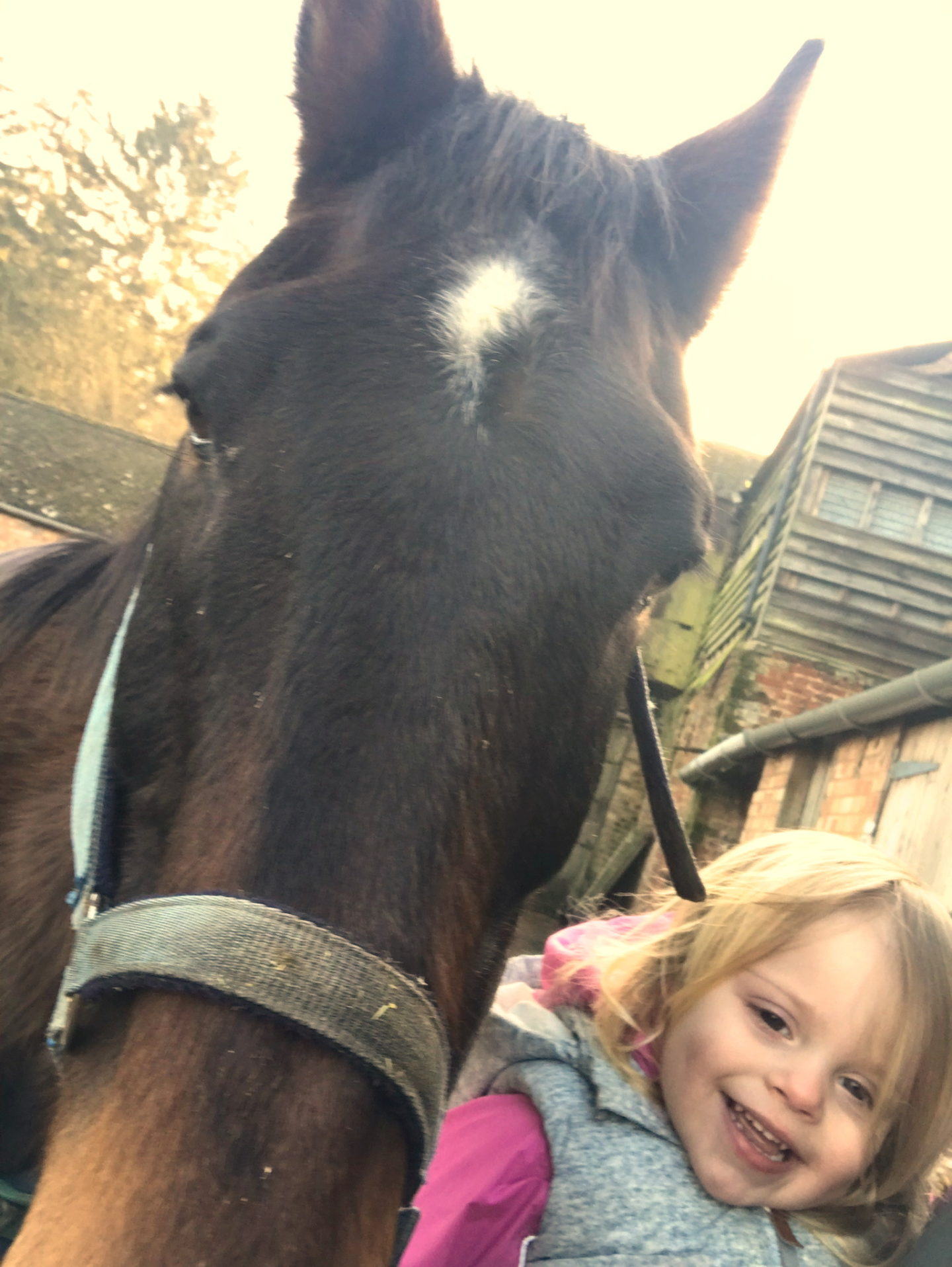 Two year old smiling in a selfie with a dark bay horse