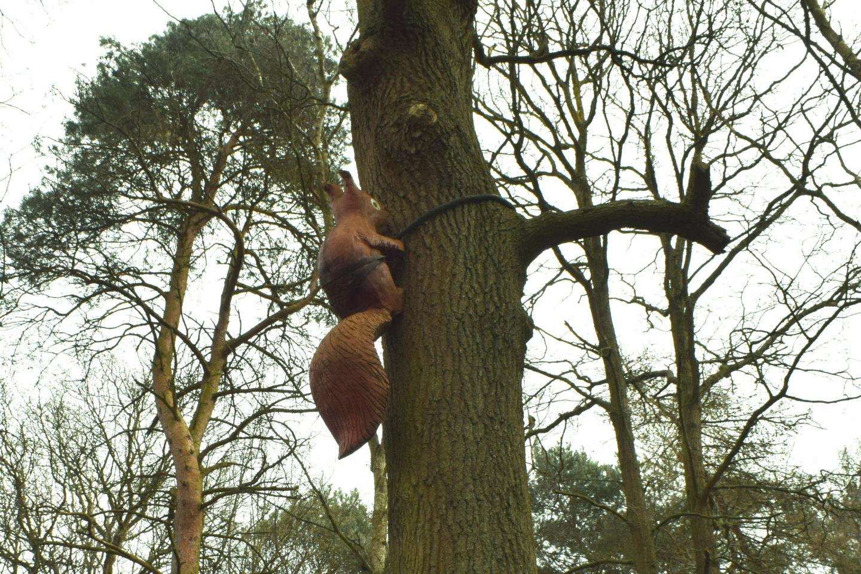 The Gruffalo Trail, Essex squirrel