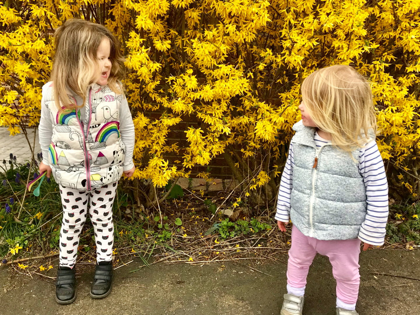 Two sisters standing in front of a yellow flowering bush, looking at one another, giggling