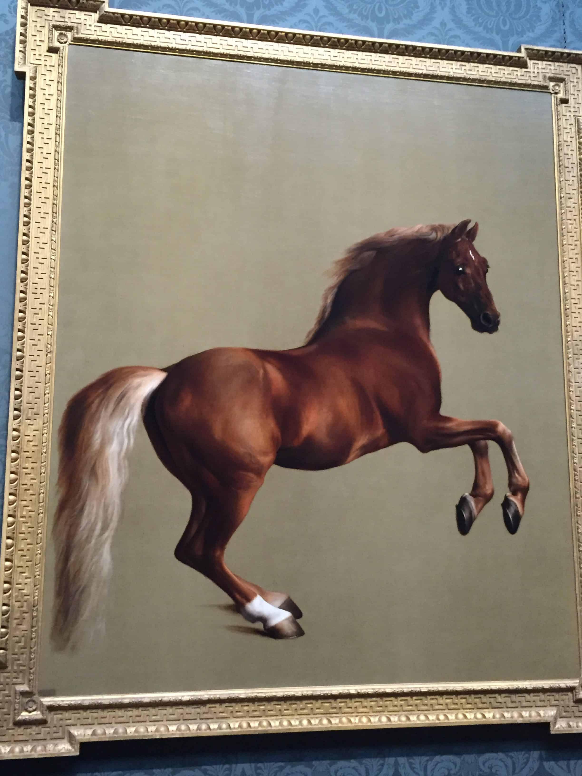 Cavalo Painting