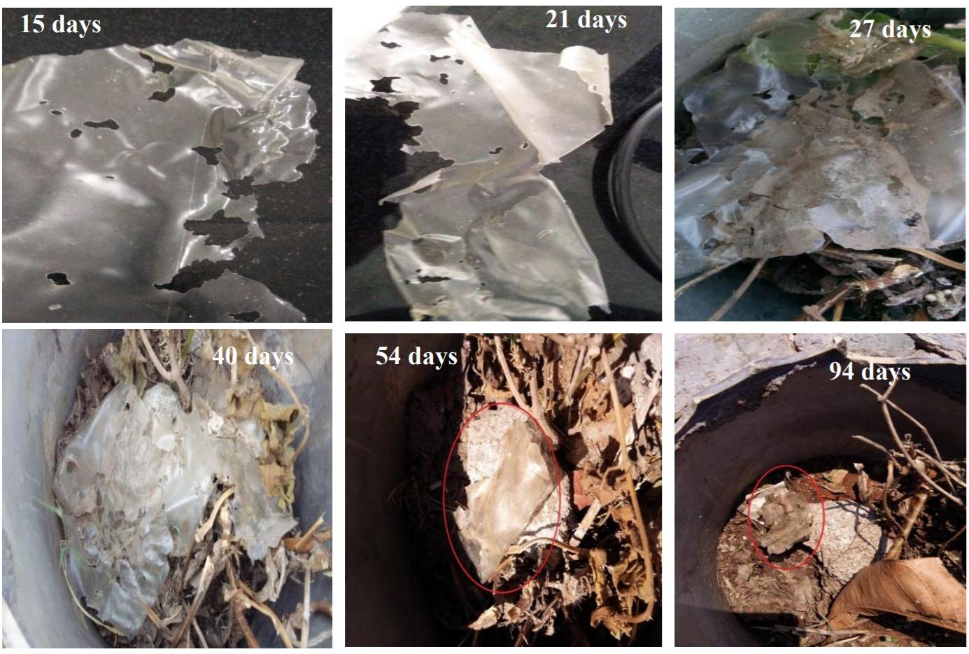 biodegradability of ABUs