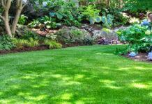 Artificial lawn realistic