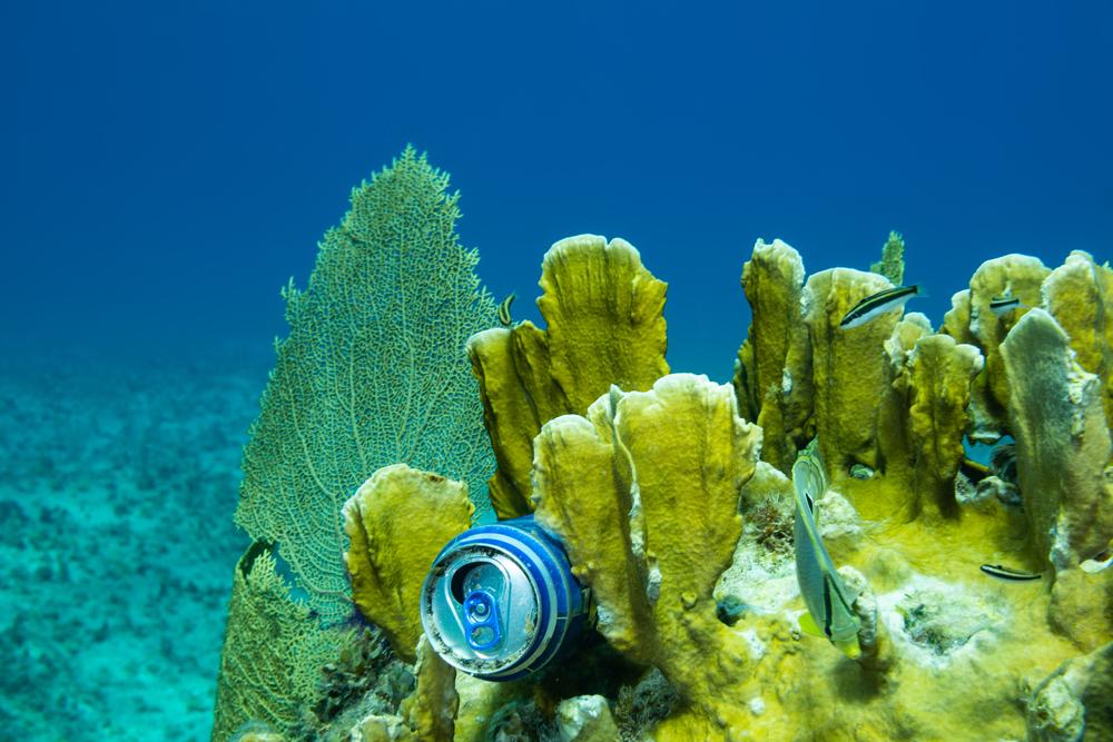 Beer underwater