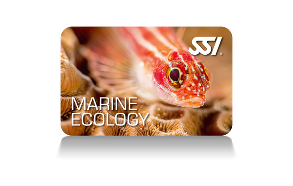 SSI Marine Ecology Specialty