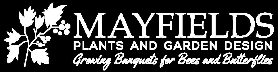 Mayfields Plants