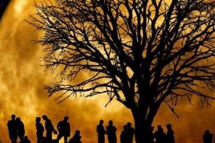 Genealogy Research Scotland