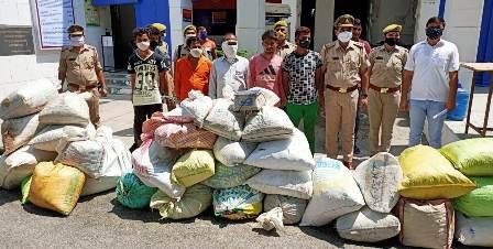 ग्रेनो पुलिस ने तीन करोड़ 36 लाख के गांजा, चरस, डोडा व भांग के साथ छह अंतर्राष्ट्रीय तस्कर को दबोचा