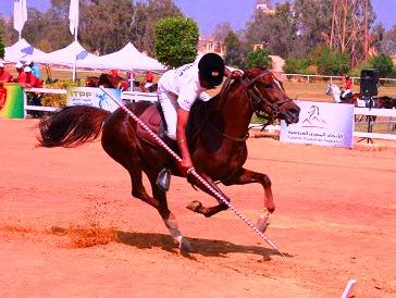 जीबीयू में दिखेगा घोड़ों की करतबबाजी, टेन्ट पेगिंग वर्ल्ड कप क्वालिफ़ायर और एसियन चैम्पियनशिप का होगा आयोजन