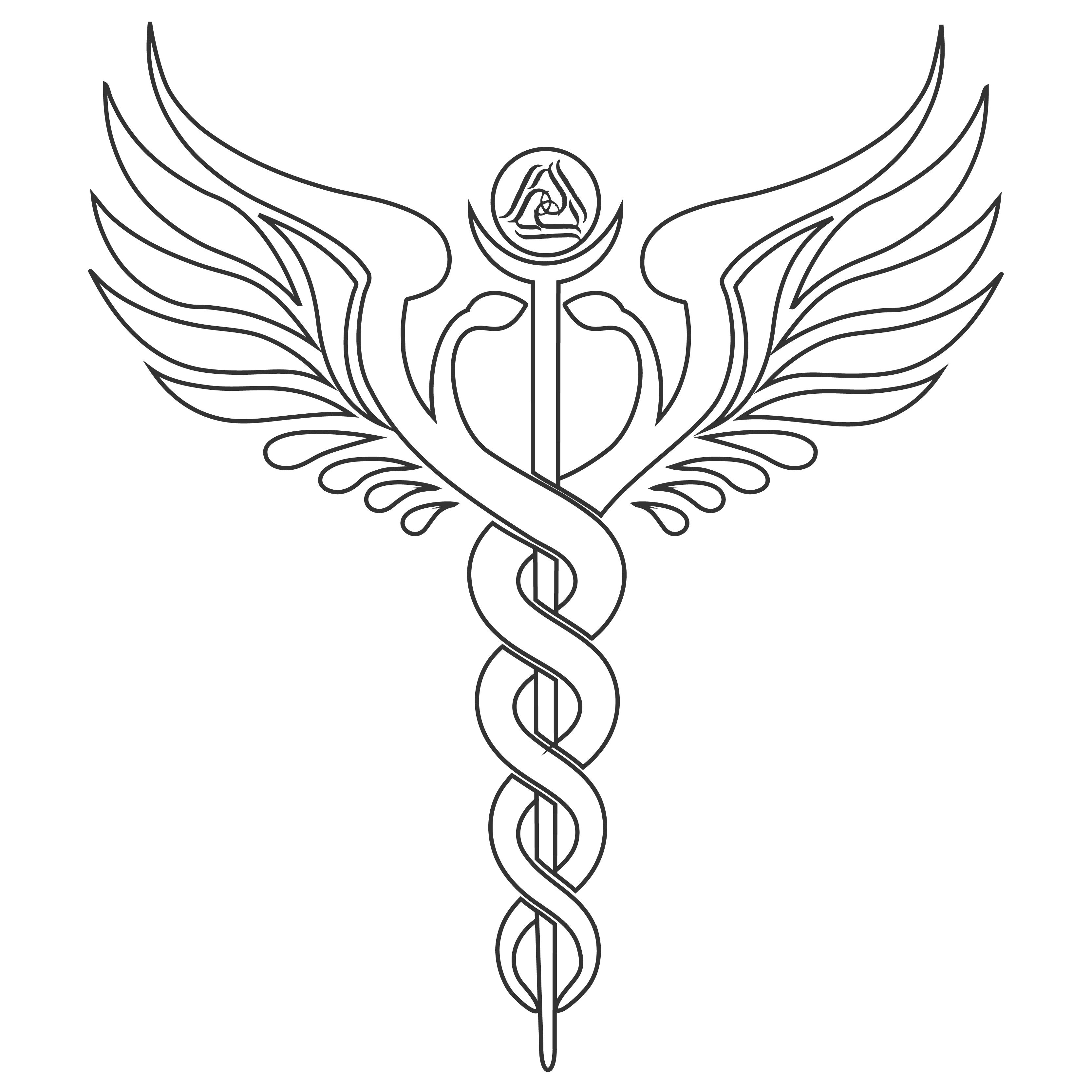 the caduceus depicted on the front cover of conscious connection