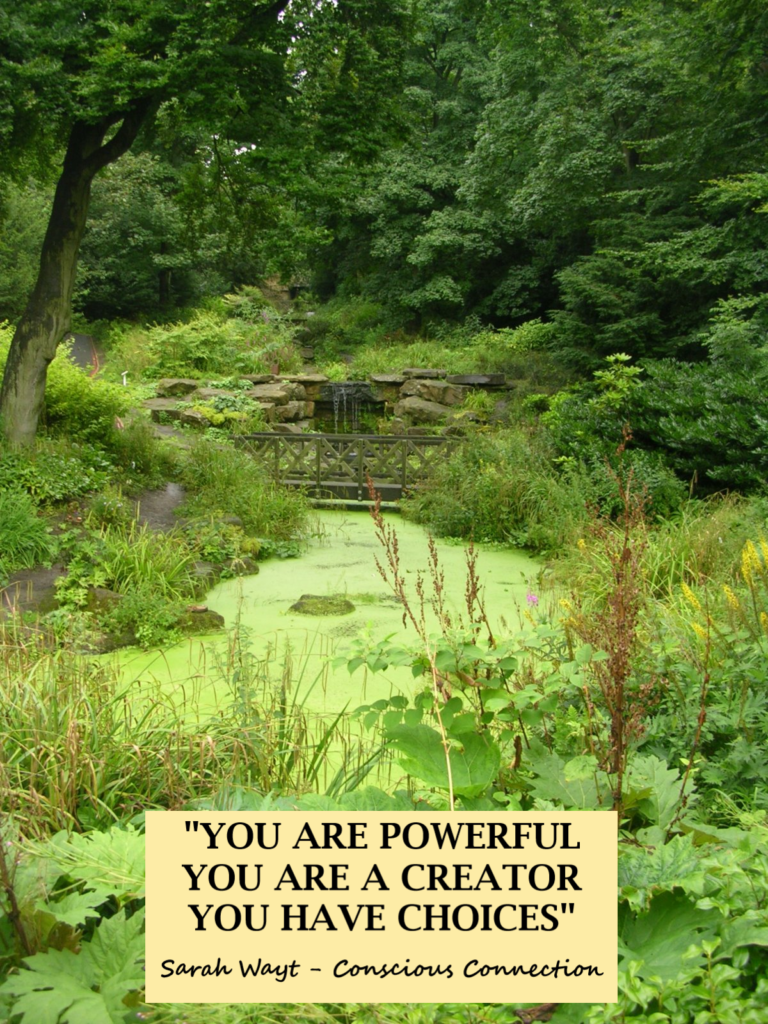 you are powerful you are a creator you have choices