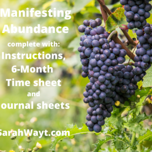 6 month spiritual energy exchange manifesting abundance timesheet