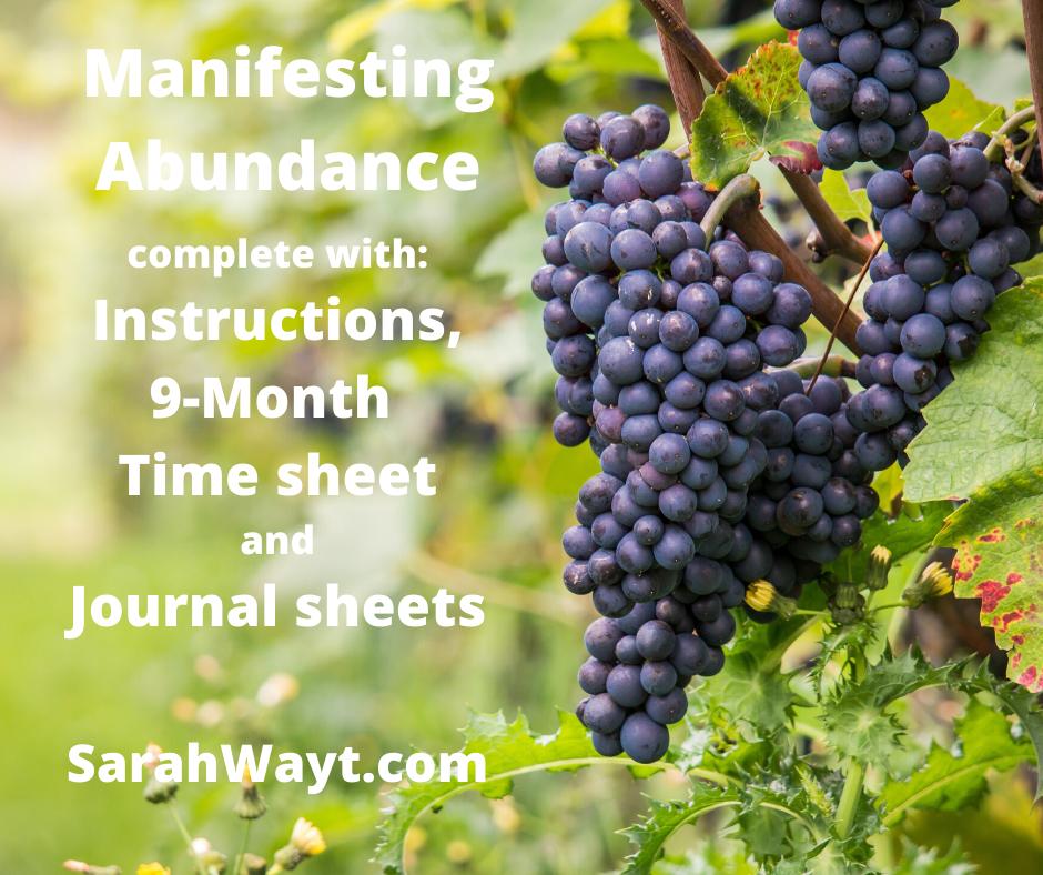 9 month spiritual energy exchange manifesting abundance timesheet