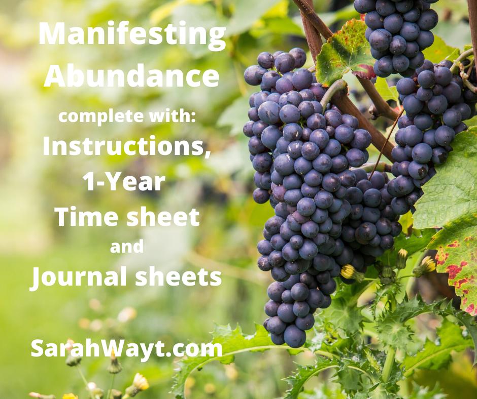 1 year spiritual energy exchange manifesting abundance timesheet
