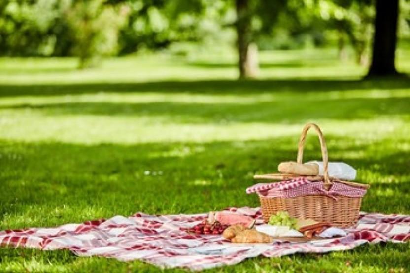 lammas picnic