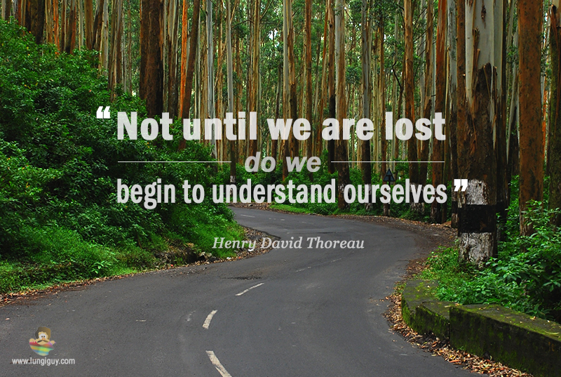 Not until we are lost …