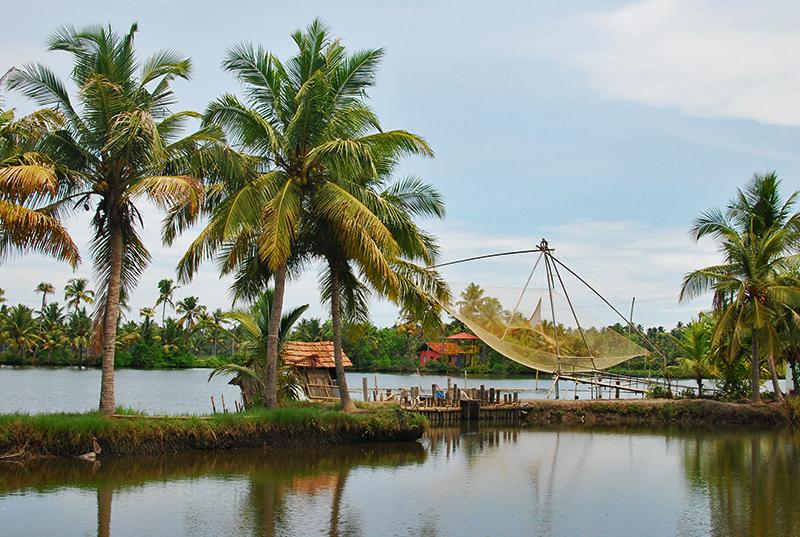 Ezhikkara: Of lagoons, paddy fields and greenery
