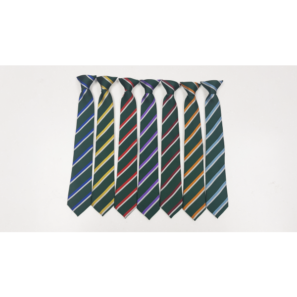 BMS House Tie